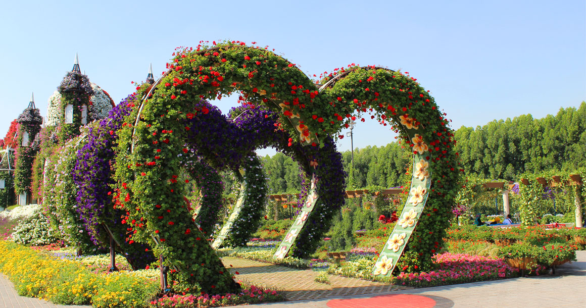 miracle_garden_5