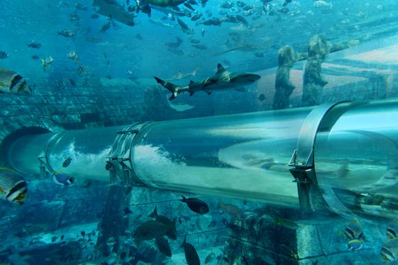 aquaventure_slider_3