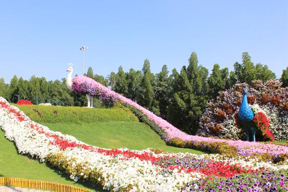 miracle_garden_slider_11
